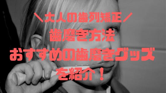 f:id:kusomeganecco2:20181220213929p:plain