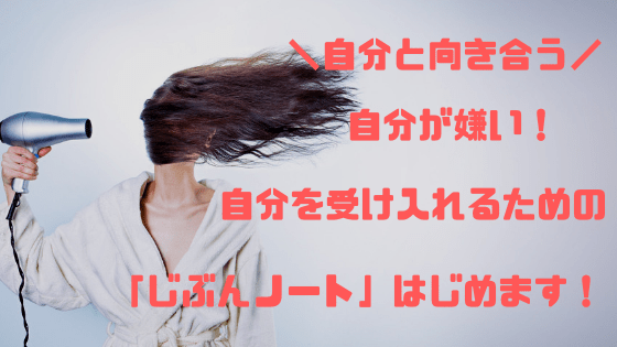 f:id:kusomeganecco2:20190120154445p:plain