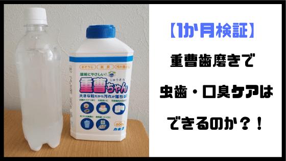 f:id:kusomeganecco2:20190331112649p:plain