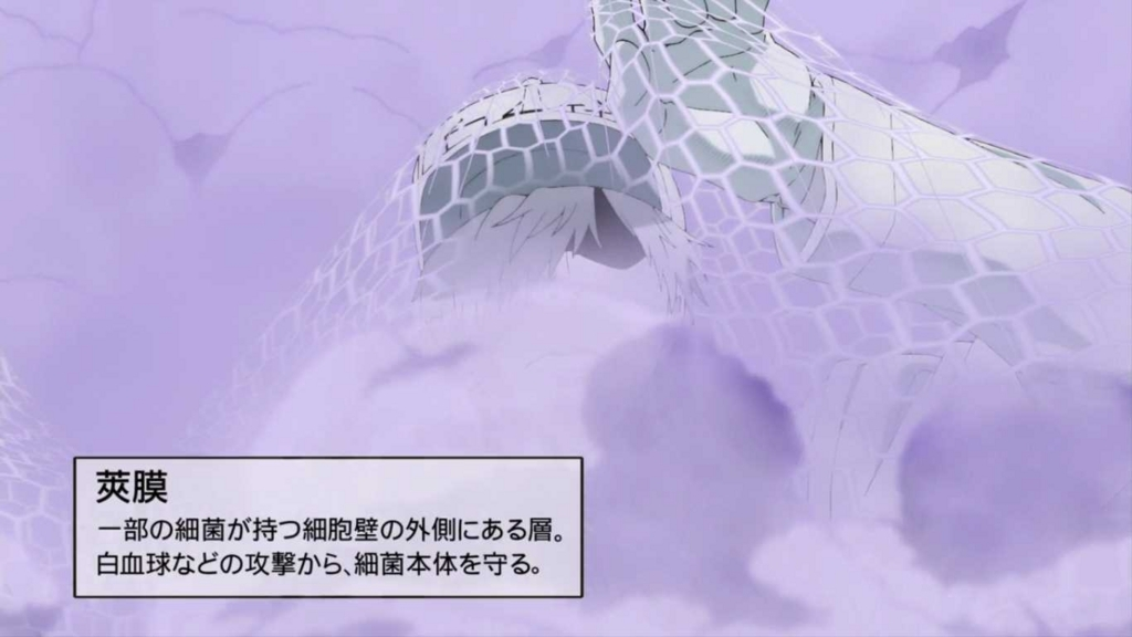 f:id:kusoniwaka:20180712223111j:plain