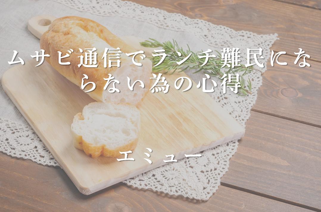 ムサビ通信_エミュー