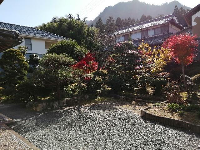 f:id:kusukusu_kun:20201119152204j:image