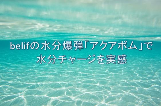 f:id:kusumibyebye:20181113165729j:plain