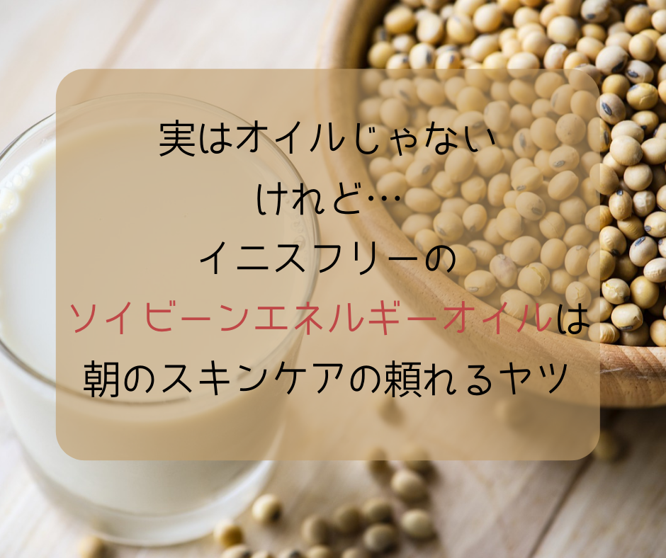 f:id:kusumibyebye:20190415053549p:plain