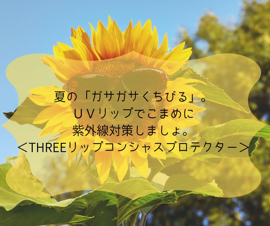 f:id:kusumibyebye:20190620062846p:plain