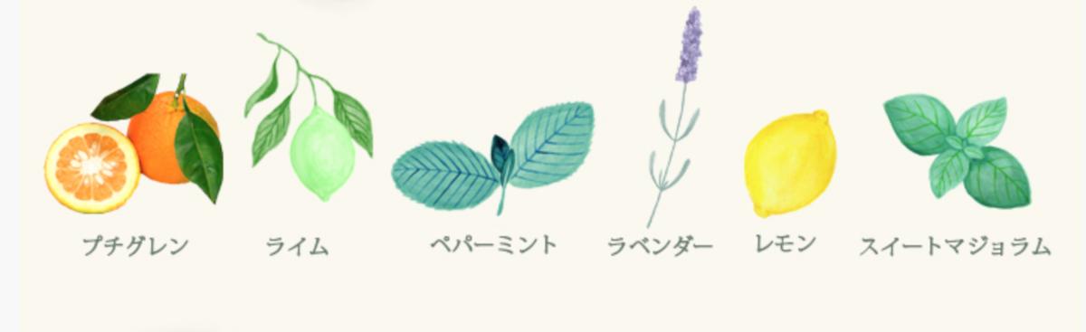 f:id:kusumibyebye:20200202070139p:plain