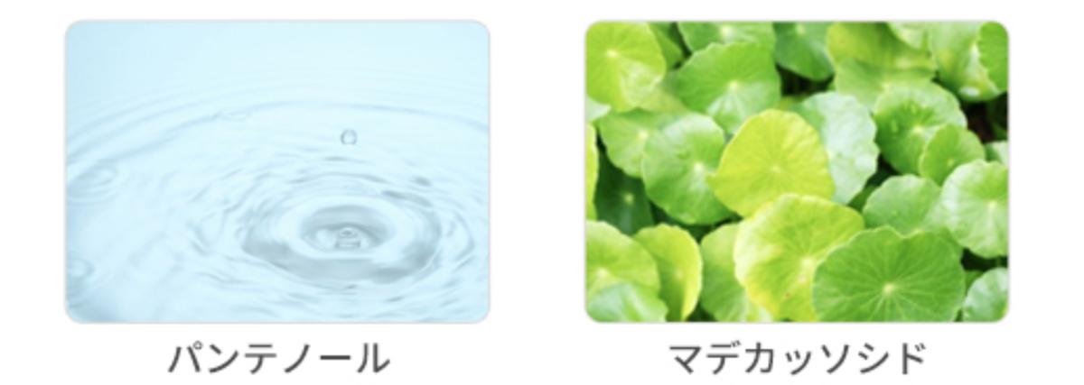 f:id:kusumibyebye:20200208115718p:plain