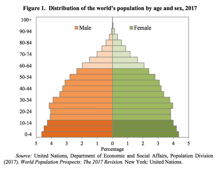 2017年の世界の年齢階層と性別の人口の分布