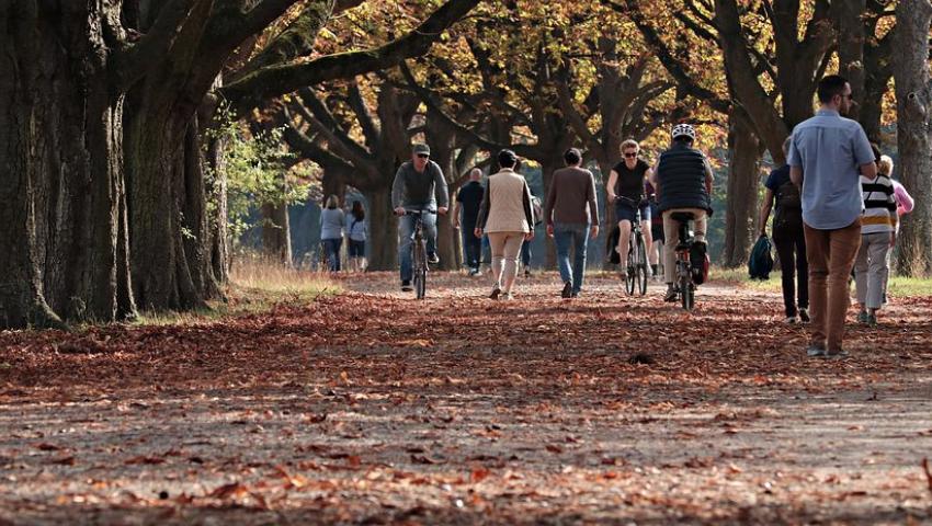 休日の郊外ののんびりとした時間が、未来の豊かな生活の基礎となる