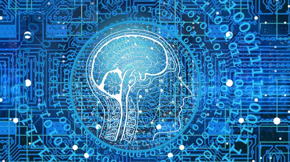 脳の精密な情報処理活動の複雑さを描いたイメージ図