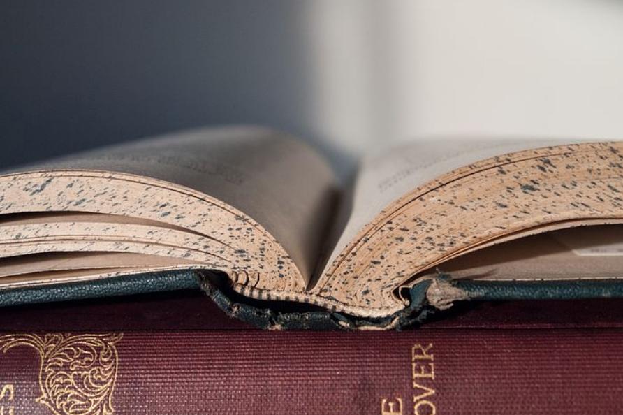 開かれて読みかけの書物が、日常から離れた未来への考察を予見させる