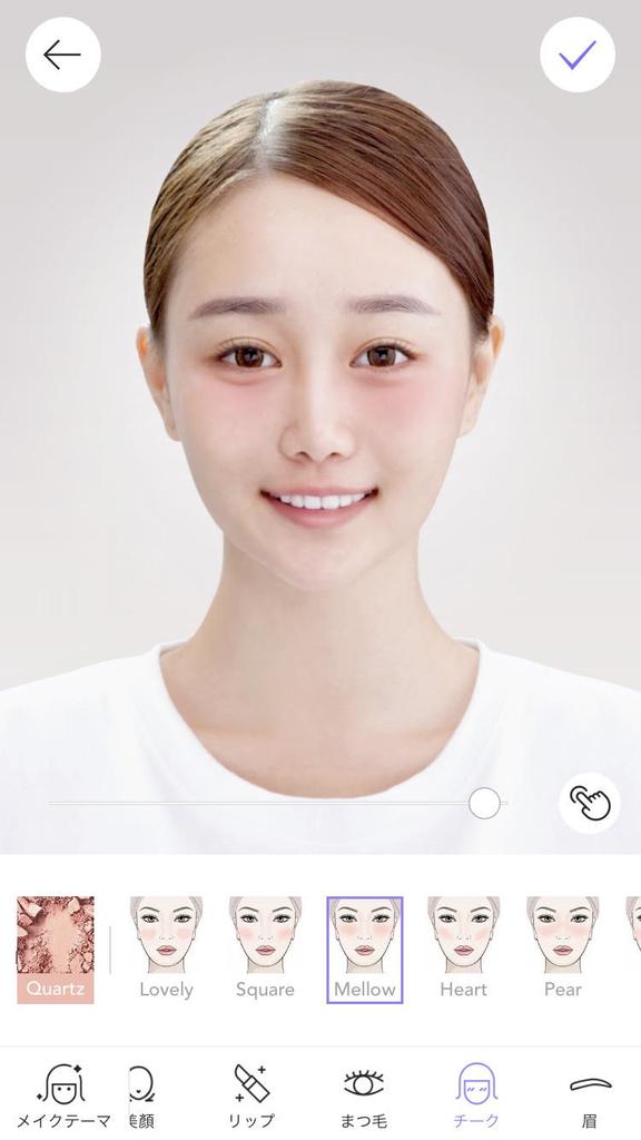 f:id:kusurino-ouchi:20181128160027j:plain