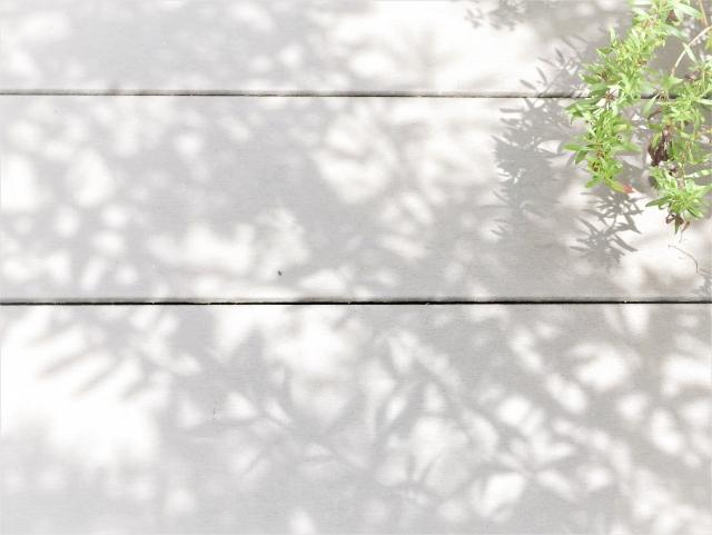 f:id:kusuriya3:20200627111708j:plain