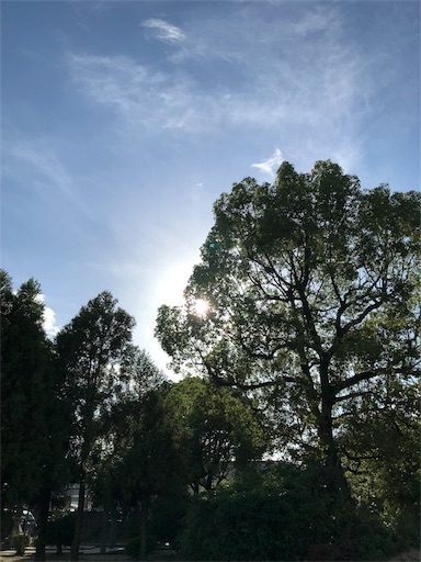 f:id:kusutanet:20180730221836j:image