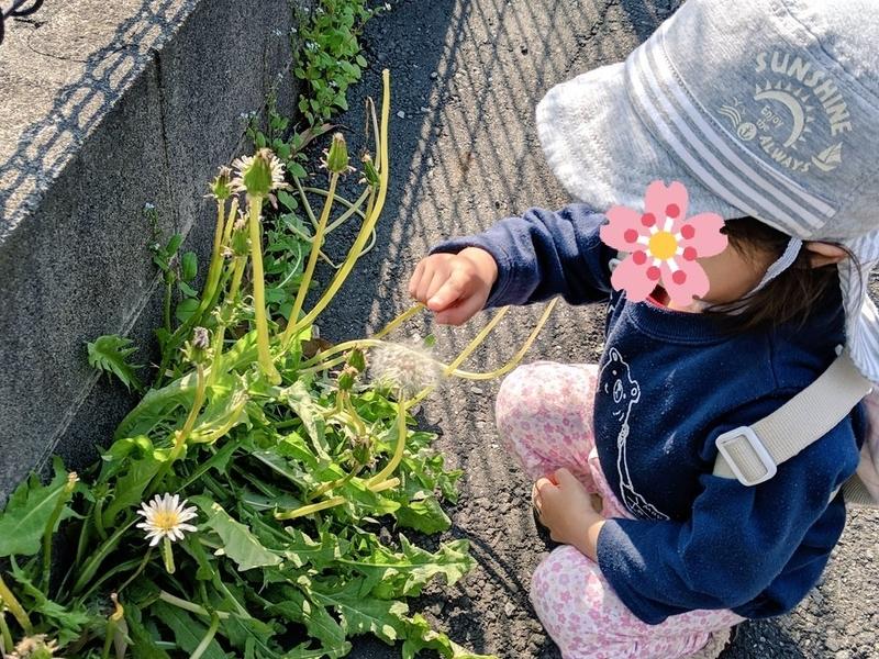 f:id:kusuwada:20210311092500j:image