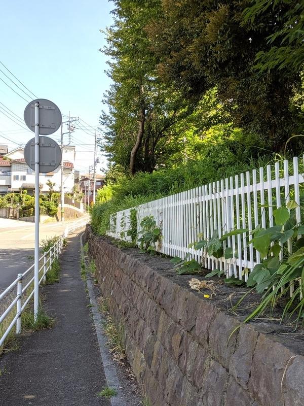 f:id:kusuwada:20210311093734j:image