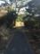 散歩コース10