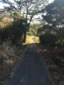 [田代島]散歩コース11