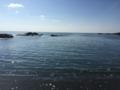 [田代島]海2