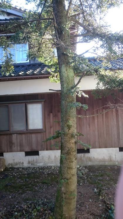 f:id:kutomi-church:20171106133701j:plain