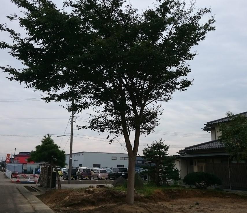 f:id:kutomi-church:20180924113907j:plain