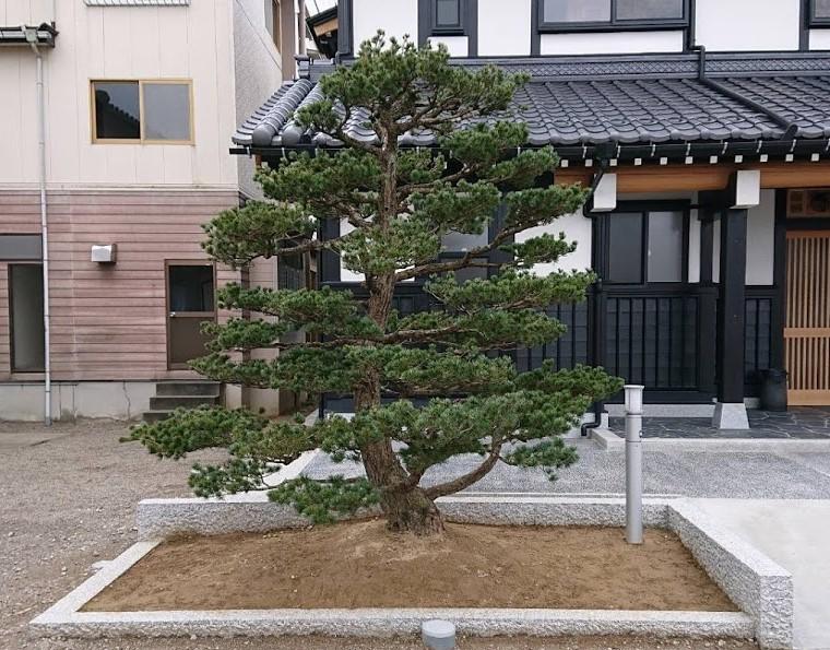 f:id:kutomi-church:20200411084211j:plain