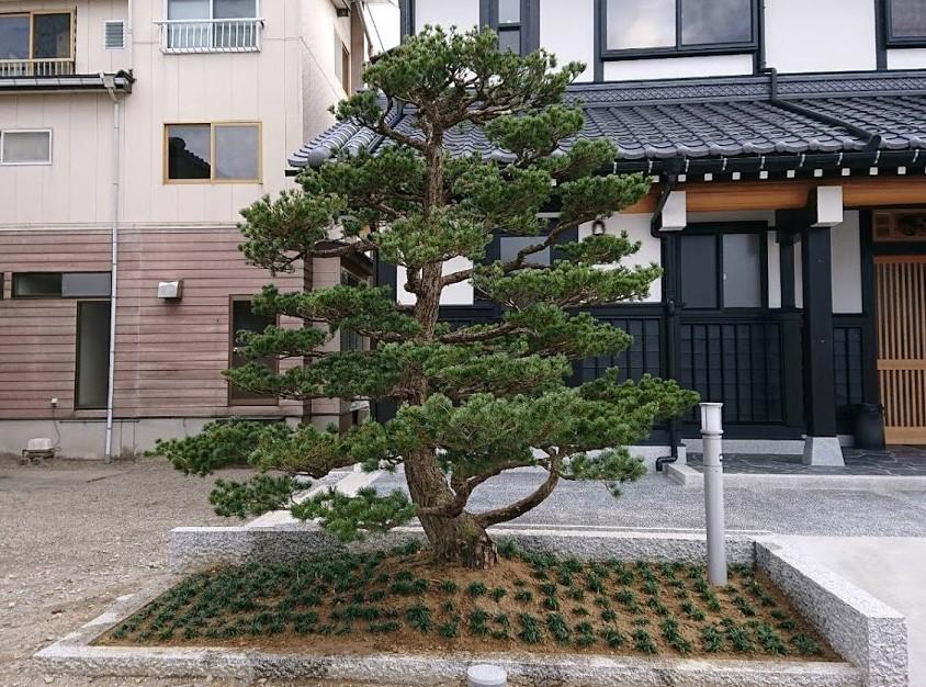 f:id:kutomi-church:20200411101421j:plain
