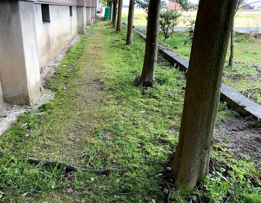 f:id:kutomi-church:20200411101634j:plain