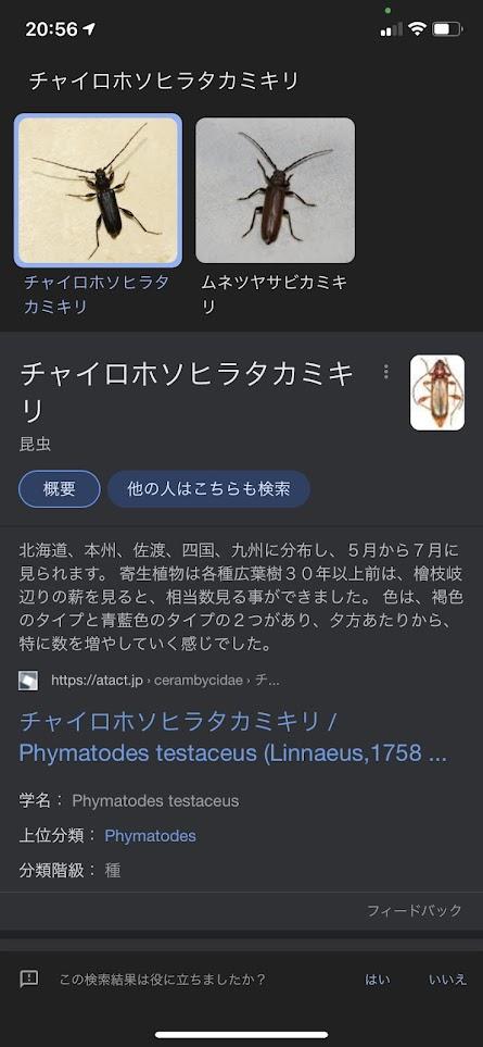 f:id:kutomi-church:20210721102205j:plain
