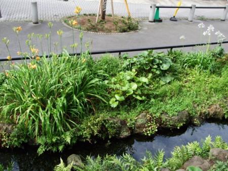f:id:kutuzawa:20110531071239j:image:right