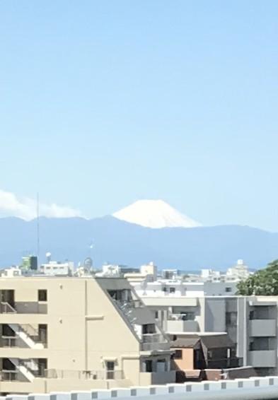 f:id:kutuzawa:20200507094550j:plain