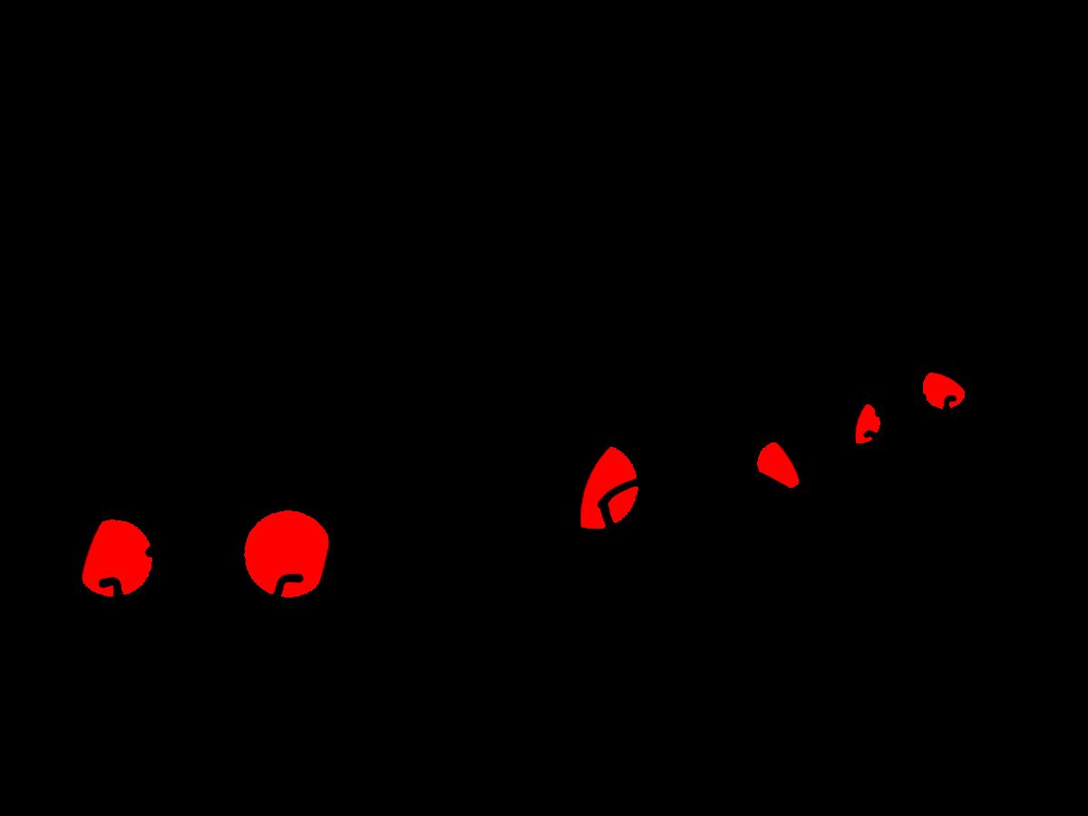 f:id:kuu-ki:20210817192904p:plain