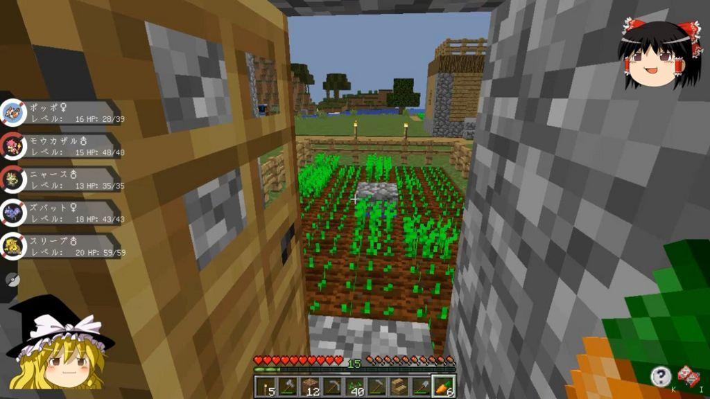 自宅の裏の畑