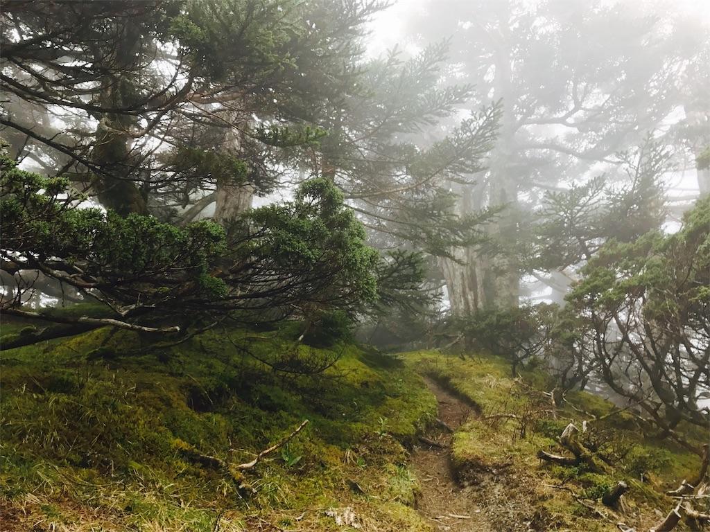 南湖大山南峰から中央尖山へと向かう登山道