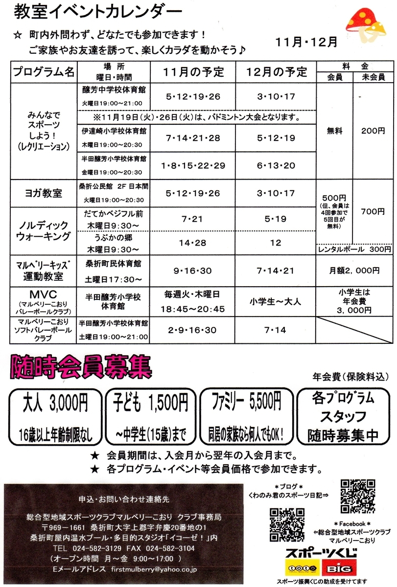 f:id:kuwanomikun:20191101140253j:plain