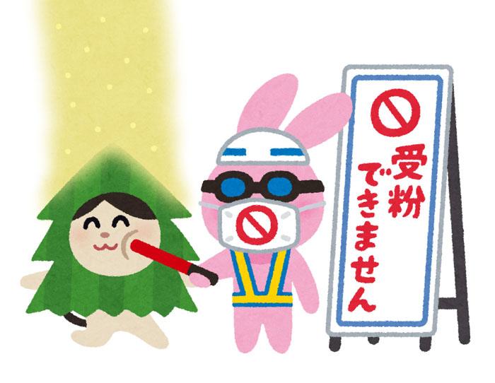 f:id:kuyamaimo:20190308231858j:plain
