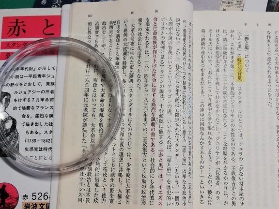f:id:kuz-akichi:20210227135317j:plain
