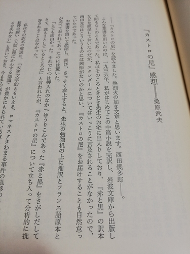 f:id:kuz-akichi:20210403143826j:plain