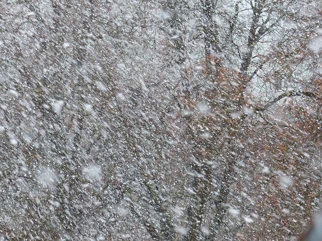 吹雪。Hans BraxmeierによるPixabayからの画像