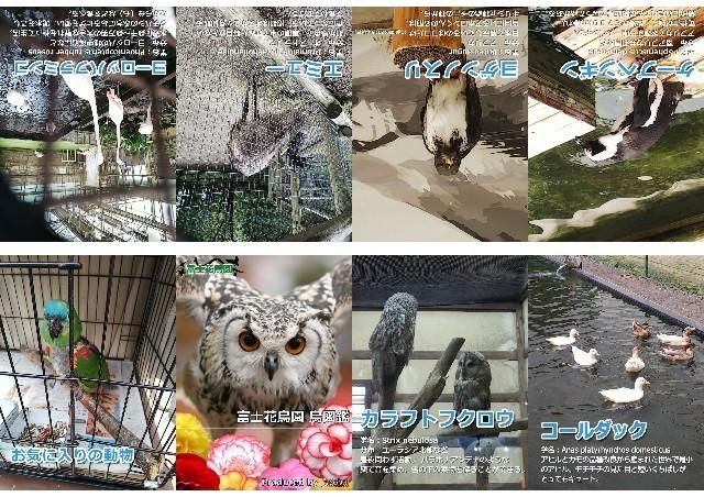 f:id:kuzu_masato:20191030210043j:plain