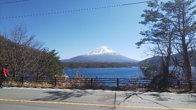 f:id:kuzu_masato:20200305135121j:image