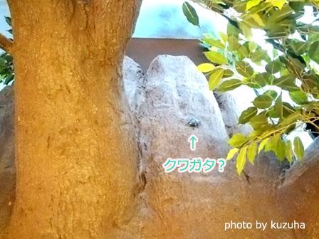f:id:kuzuha_t:20160820235358j:plain