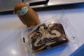 [food]choco&white choco pound (Sweets+)