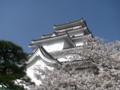 鶴ヶ城16-04-13