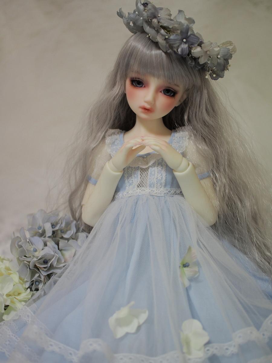 f:id:kwsk_doll:20191231185202j:plain
