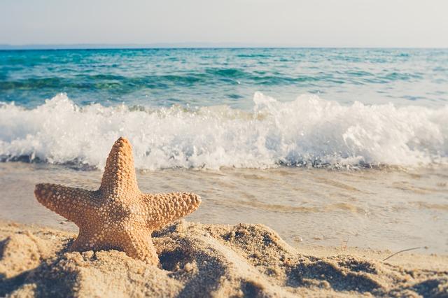 晴れたビーチと岩の上に飾り付けたヒトデ