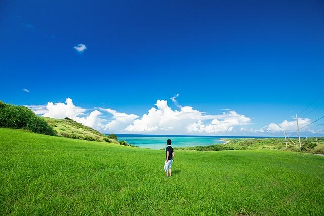 真夏の草原に立って遠くの海を眺める1人の男性