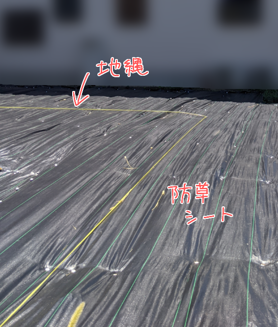 f:id:kyatoraba:20210726184057p:plain
