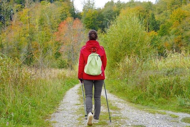 杖をつきながら山道を歩く女性