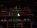 京都新聞写真コンテスト 映える蹴鞠